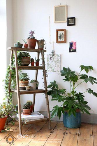 kệ để cây cảnh trong nhà (7)