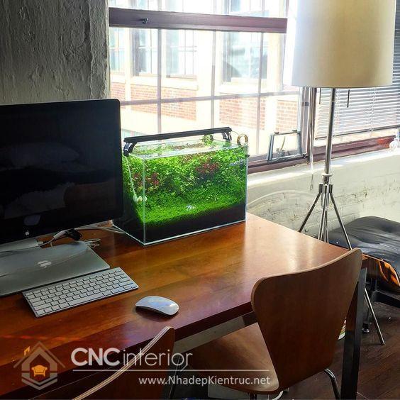 cách trang trí bàn làm việc theo phong thủy bằng bể cá mini